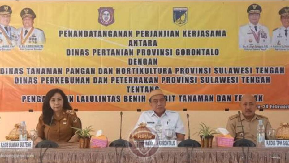 Kembangkan Sektor Pertanian, Sulteng-Gorontalo Bangun Kerjasama