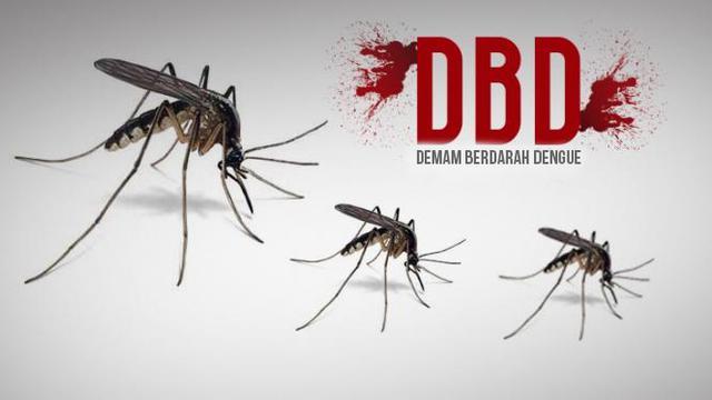 Ilustrasi Demam Berdarah Dangue (DBD)