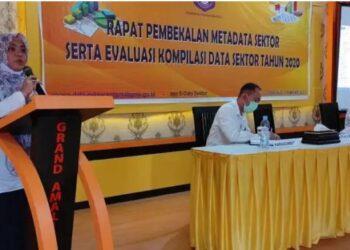 Kepala Dinas Kominfo dan Statistik yang diwakili Kabid Statistik Fatma Biki saat membuka acara pembekalan wali data sektoral di Hotel Amalia, Kabupaten Boalemo, Rabu (17/2/2021). (Foto: istimewa).