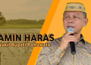 Amin Haras (F : Istimewa).