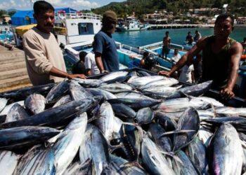 Hasil tangkapan nelayan di Ternate, Maluku. KKP