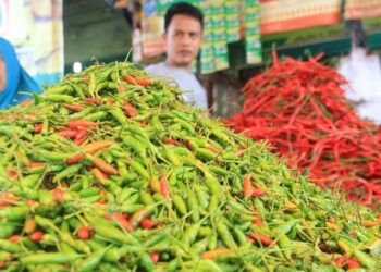 Harga cabai melonjak hingga Rp. 130.000/kg di pasar Jakarta. ANTARA FOTO/Syifa Yulinnas