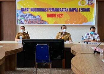 Pemvrov Gorontalo Targentkan Pengiriman 5 ribu Ekor Ternak Antar Pulau