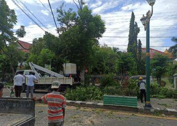 Petugas DLH Kabupaten Gorontalo membersihkan sekitar lokasi pohon tumbang. (Foto : Istimewa)