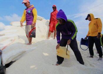Sejumlah pekerja mengumpulkan garam ke dalam karung di desa Luwunggeusik, Krangkeng, Indramayu, Jawa Barat, Senin (22/3/2021). Pemerintah membuka kembali impor garam sebanyak 3 juta ton pada tahun ini.  ANTARA FOTO/ Dhedez Anggara