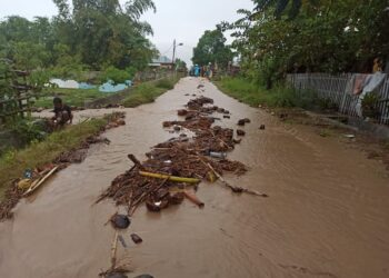 Kondisi salah satu titik banjir di Desa Tenilo, Limboto Barat.