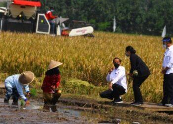 Presiden Joko Widodo (ketiga kanan) ketika berdialog dengan petani dalam Kunjungan Kerja di Kanigoro, Pagelaran, Malang, Jawa Timur. ANTARA FOTO/ Ari Bowo Sucipto
