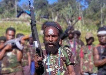 Anggota kelompok kriminal bersenjata (KKB) Lekagak Teleggen masuk daftar DPO Polri. Satgas Nemangkawi