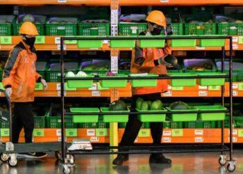 Sejumlah pekerja menyusun sayuran yang akan dikirim di fasilitas National Fulfillment Center (NFC) Cikarang, Kabupaten Bekasi, Jawa Barat, Rabu (21/4/2021). Menurut data Badan Pusat Statistik (BPS) ekspor hasil pertanian Indonesia mencapai US$390 juta per Maret 2021, meningkat 25,04 dari tahun 2020. ANTARA FOTO/ Fakhri Hermansyah