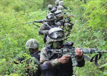 Ilustrasi. Anggota TNI sedang menyusuri hutan Papua. (istimewa/inews.id)
