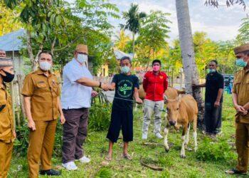 DPRD Provinsi Awasi Langsung Penyerahan Bantuan Sapi Kepada Masyarakat