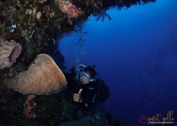 Spot Monthuli Island (Dok. POSSI Pohuwato)