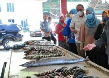 Wagub Gorontalo Idris Rahim meninjau Pelabuhan Perikanan Tilamuta di Kecamatan Boalemo, Kamis (24/6/2021). (Foto: Antara/Kominfo)