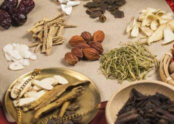 Ilustrasi Obat Herbal (Foto : Istimewa)