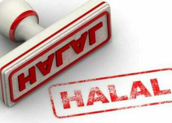 Ilustrasi Halal. (Foto : Istimewa)