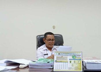 Kepala Dinas Lingkungan Hidup Gorontalo Utara, Ilyas Lagarusu. (Foto :60dtk.com)